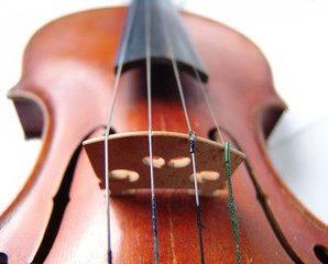 Violin, Viola, Cello, Bass!
