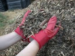 Can you help the High School Seniors…spread mulch?