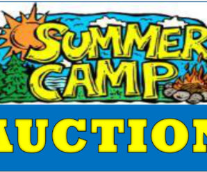 And now…the Camp Fair Auction!  Check out the deals on which you may bid!!