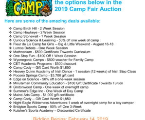 Camp Fair Auction Round 2 is still open for bidding – don't miss your chance at these awesome summer camp deals!